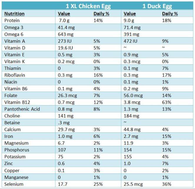 nutritional-values-chicken-vs-duck